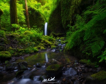 Reflecting Pool, waterfalls, waterfall, landscape, wall art, photo, oregon, photography, nature