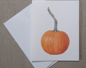 """Pie Pumpkin note cards, 6 blank botanical note cards with envelopes, all one design, 5 1/2"""" x 4 1/4"""""""