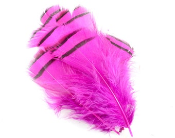 3.5 Inch Purple Lady Amherst Feathers. (10) Purple Pheasant Feathers. Short Purple Feathers. Black Lined Feathers. Purple Bird Feathers.