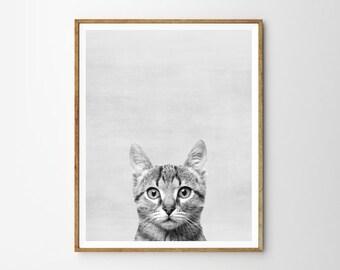 Cat, Nursery, Animal, Kids room, Modern art, Wall decor, Digital art, Printable, Digital poster Instant Download 8x10, 11x14, 16x20