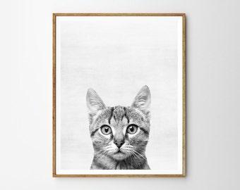Cat print, Nursery, Animal, Kids room, Modern art, Wall decor, Digital art, Printable, Digital art Instant Download 8x10, 11x14, 16x20