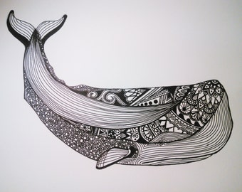 Whale Ink Drawing