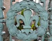 travel photography, New Orleans photography, home decor, wall print, fleur de lis, french quarter, mint green
