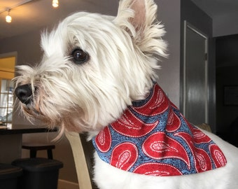 Small Red and Blue Paisley Dog Bandana