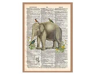 Elephant & friends-unframed dictionary print