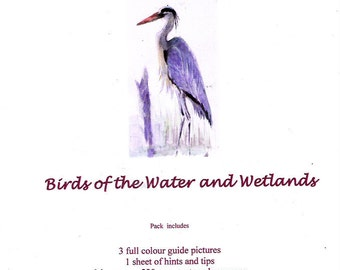 BIRDS of the WATER and WETLANDS  ready to paint in watercolour