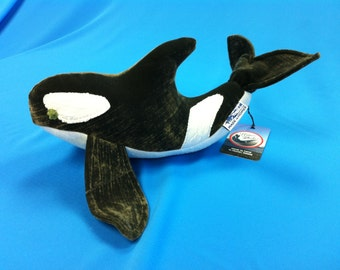 Small Orca