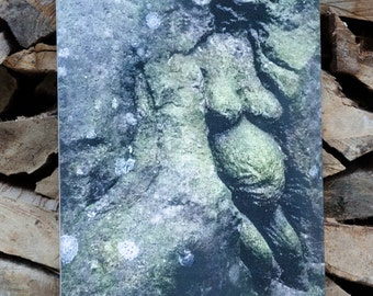 Stoneface Creative Original Canvas Small 'Pregnant Woman'