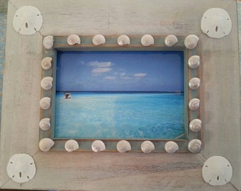 Sand dollar frame