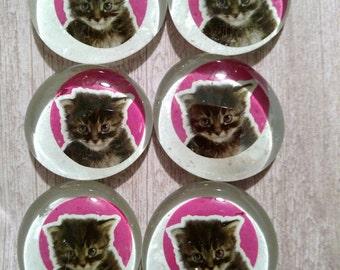 Glass magnets, Cat magnet set, cat kitchen magnets, kitten magnet set, cat magnets, kitty cat magnets, gray cat magnets, glass cat magnets