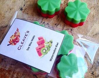 Watermelon Kiwi Scented Soy Wax Melts