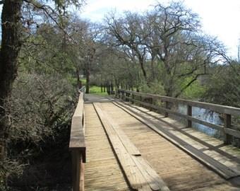 a bridge to serienty