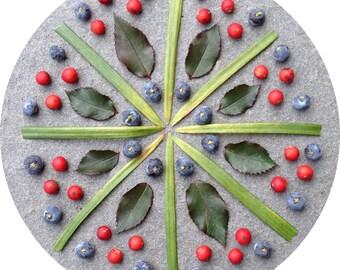 winter berry mandala