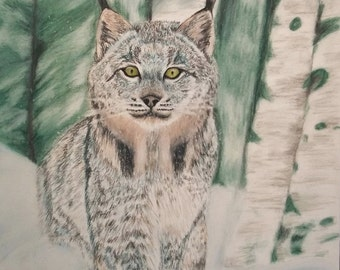 Lynx Portrait Print