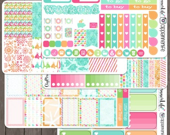 Summer Swim Weekly Planner Sticker Kit // Repositionable Matte Stickers