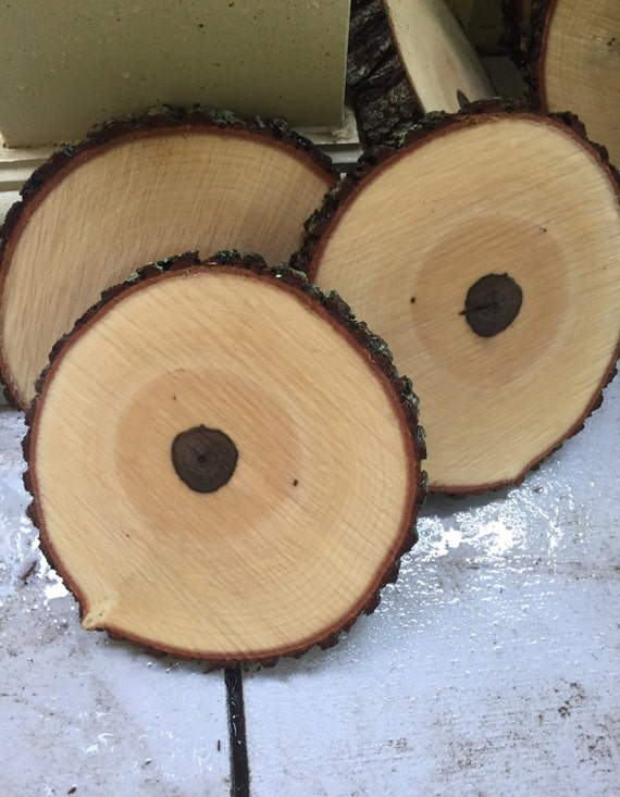 Set of rustic wedding decor wood slices by