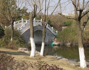Bridge in Xiasha, China, Landscape Photography, Fine Art Photography,