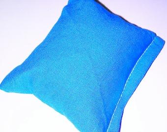 Bright blue catnip pillow!