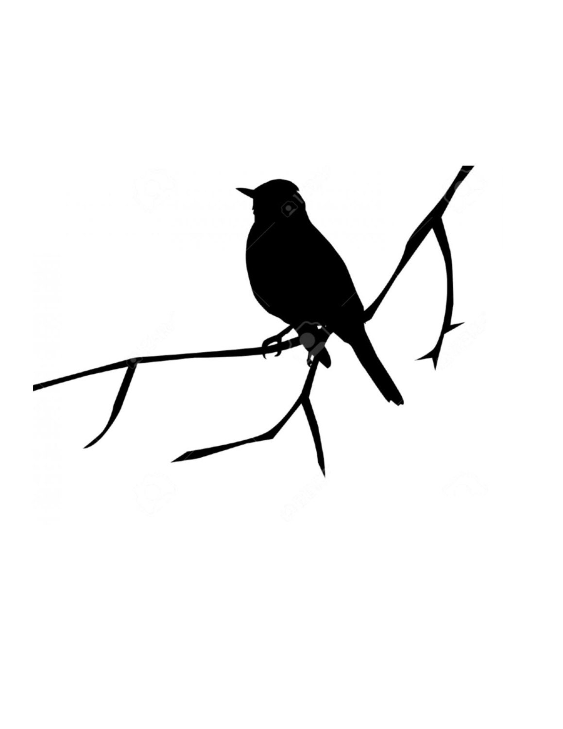 Bird On Branch Stencil Made From 4 Ply Mat Board
