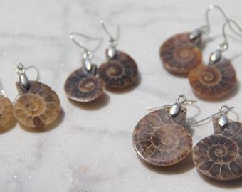 Miniature Ammonite Fossil earrings