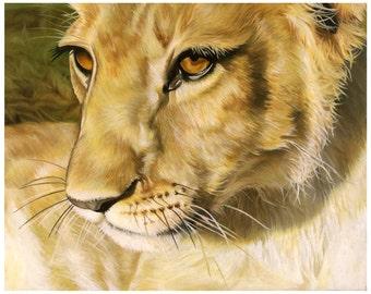 Lion Oil Painting Print - Kalina (Single Vision)