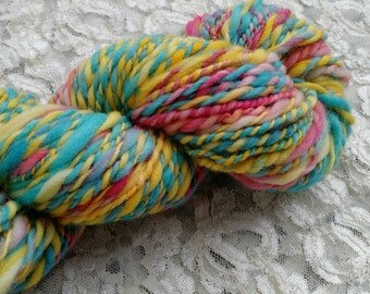 Candy Shop 100% merino wool 2 ply hand spun hand dyed heavy worsted yarn fractal spun