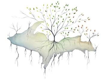 U.P. Roots