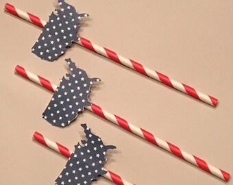 12 Red White and Blue Straws 4th of July Straws Patriotic Straws Birthday Straws BBQ Straws