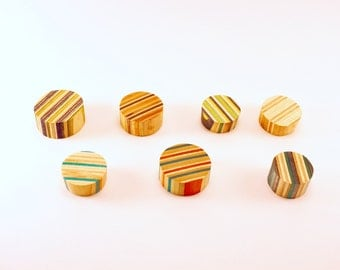 Set of 2 Circular Magnets made from Recycled Skateboards
