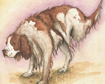 Giclee Print of an Original Watercolour Painting. Springer Spaniel.
