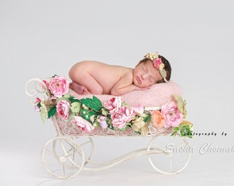 digital backdrop newborn baby girl pink flowers white
