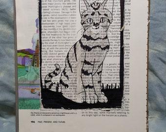 Cat Book Portrait