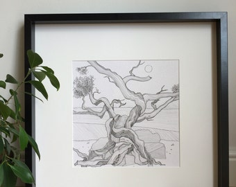 Gnarled tree, original drawing, pen and ink, black and white art, wall art, tree picture, interior detail, beach tree