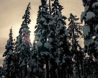 Winters Peace
