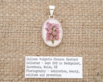 Common Heather Flower Pendant. Sterling Silver 925 Botanical Necklace with real flower specimen