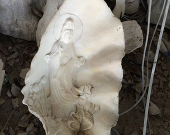 Carving on fossil shell