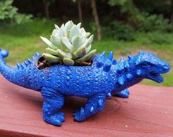 Blue Pinacosaurus Dinosaur Succulent Planter with live plant