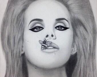 Lana Del Rey (original drawing by Lacey Noel)