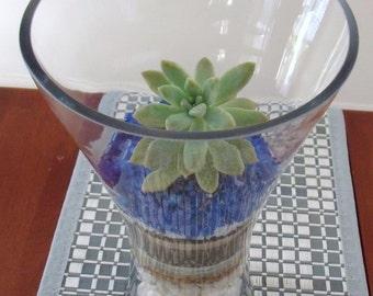 Dining table Centrepiece - Succulent Terrarium