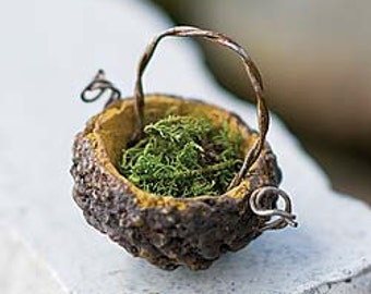 Miniature Dollhouse FAIRY GARDEN ~ Tiny Acorn Basket