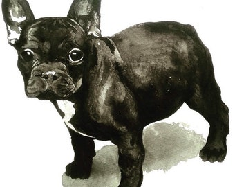 Watercolour French Bulldog Puppy, Black French Bulldog Print, Ready to Frame, Nursery Art, Dog Lovers