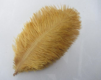 10 Metal Gold ostrich feathers for handmade items feather centerpiece,hat,fascinator,millinery