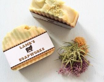 Lamb's Soapworks Lime Coconut Milk Soap 5oz