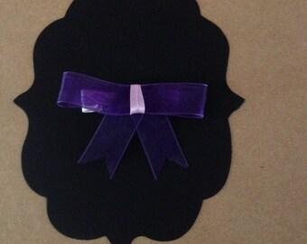 Beautiful Purple Bow