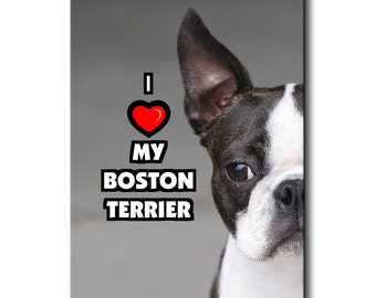 Boston Terrier I Love My Fridge Magnet