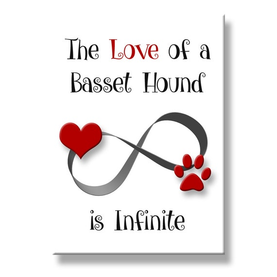 Basset Hound Infinite Love Fridge Magnet