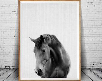 Horse Wall Art Print, Horse Black and White, Wilderness Wall Art, Horse Photography, Horse Photo, Horse Decor, Nursery Art, Printable Art