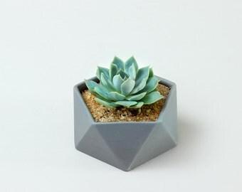 Flat Icosahedron Geometric Ceramic Pot