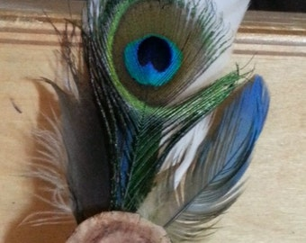 Feather hair clip wood peacock conure blue green organic