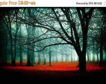 Summer Sale - Enter - Fairytale Photography - red enchanted forest - trees woods landscape - fog photos